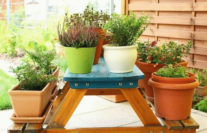 Comment bien am nager un balcon tout pratique - Plante de balcon ...