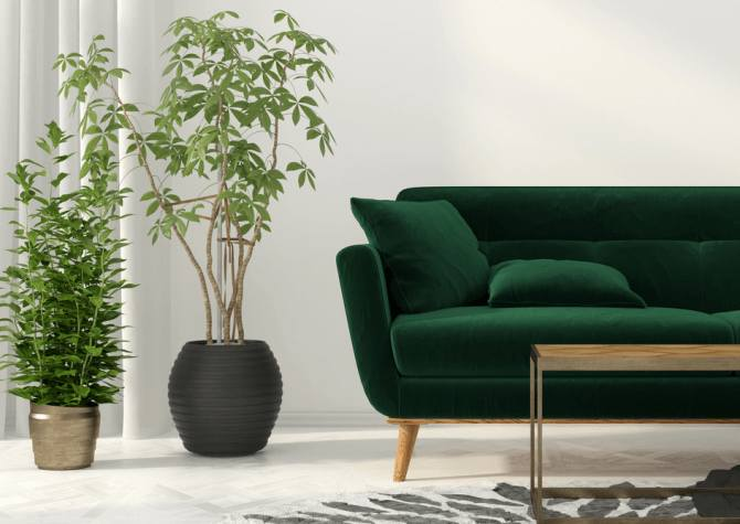 Id e d co salon 10 astuces pour r nover son salon for Plante pour salon