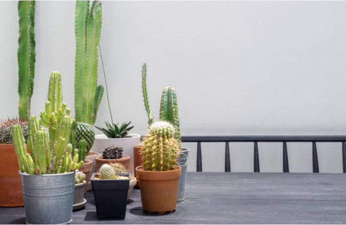 nettoyer et peindre le m tal toutpratique. Black Bedroom Furniture Sets. Home Design Ideas