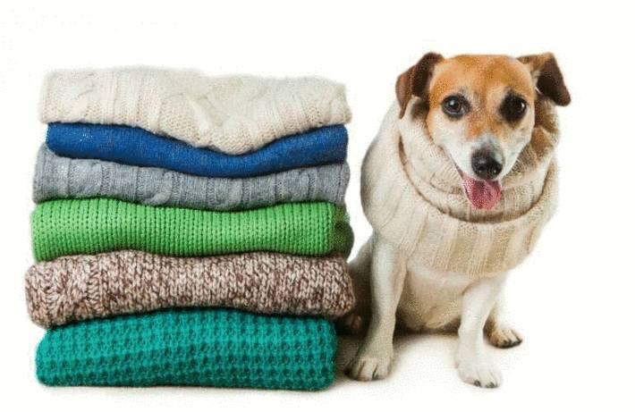 Enlever une tache sur la laine