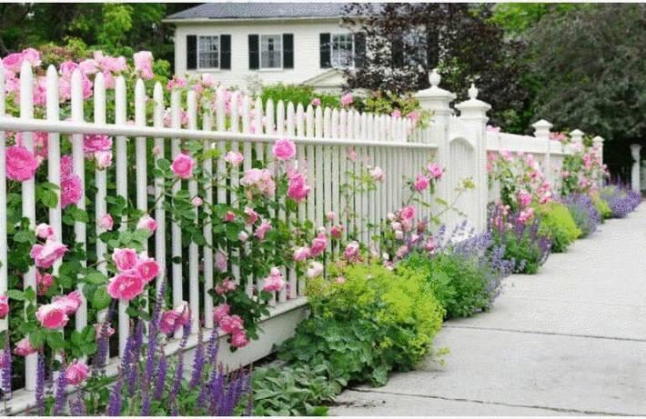 Nettoyer clôture, grille et portail
