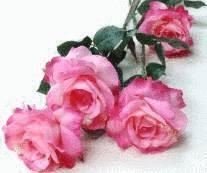 Nettoyer Les Fleurs En Tissu Tout Pratique