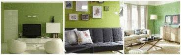 id es peinture salon vert. Black Bedroom Furniture Sets. Home Design Ideas