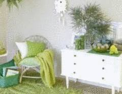 un sjour feng shui sejour vert et blanc - Vert Chambre Feng Shui