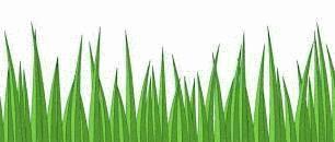 comment nettoyer de l 39 herbe sur un jean la r ponse est sur. Black Bedroom Furniture Sets. Home Design Ideas