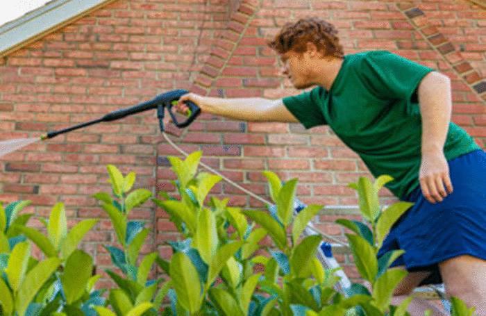 nettoyer et entretenir un mur en briques