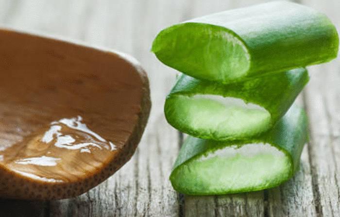 comment utiliser gel aloe vera