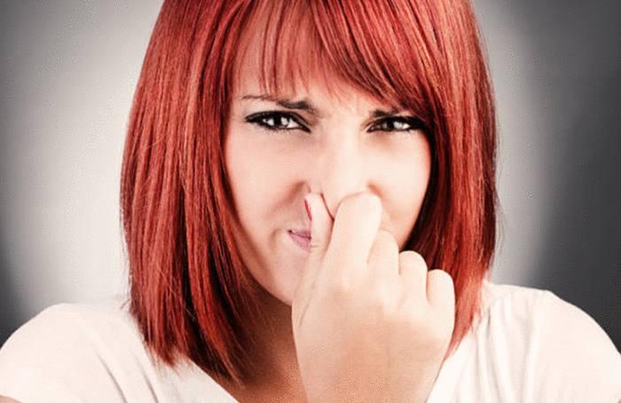 15 astuces pour enlever odeur wc naturellement