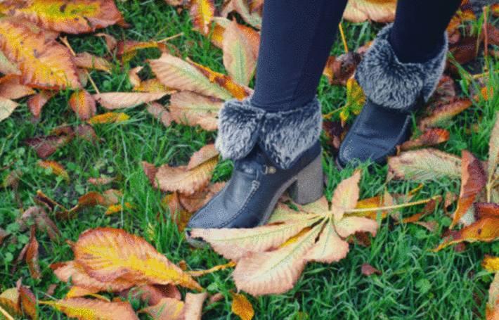 Comment utiliser les feuilles mortes