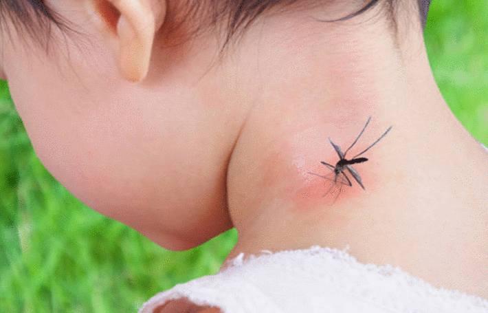 comment eviter les piqures de moustique