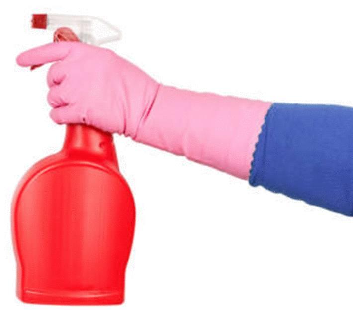 désinfectants naturels