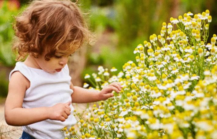 une petite fille est en train de se faire une tache de plante