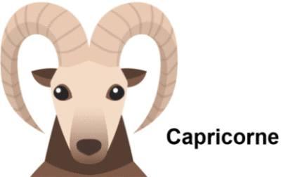 signe astrologique capricorne