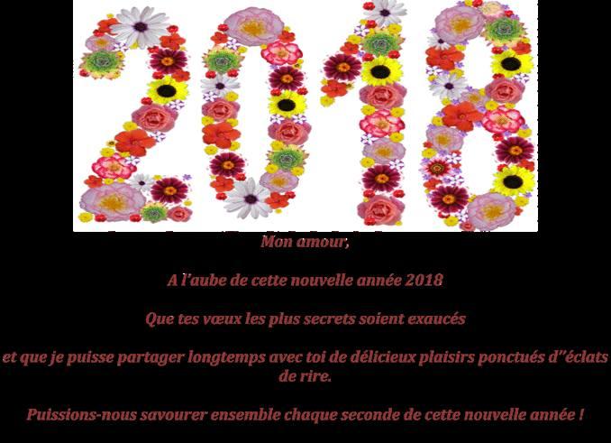 voeux de bonne année 2018