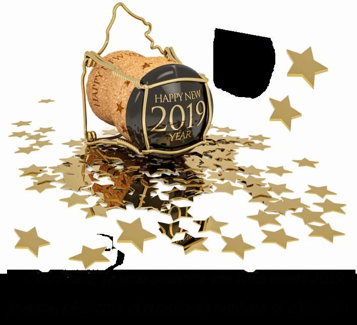 nouvel-an-2019-%20message-bonne-ann%C3%A9e-carte-de-voeux-2019-carte-voeux-carte-de-voeux-gratuite