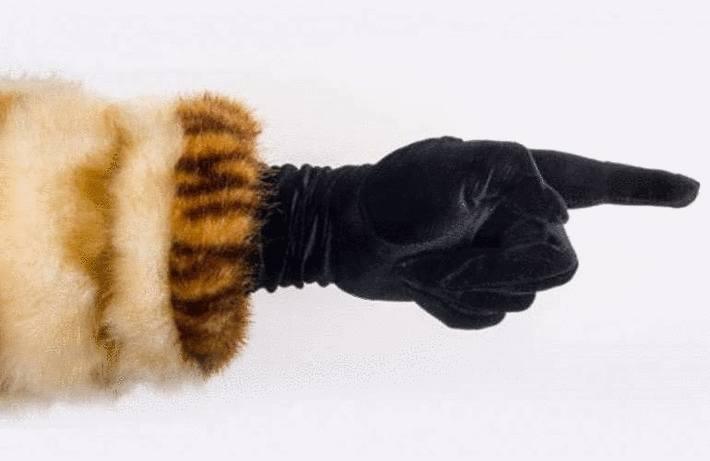 Ranger manteau ou veste fourrure