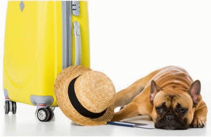 Nettoyer une valise