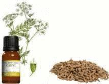huiles essentielles contre flatulences et gaz intestinaux