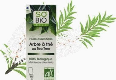 huile essentielle de tea tree ou d 39 arbre th utilisation tout pratique. Black Bedroom Furniture Sets. Home Design Ideas